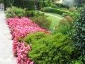 giardino31