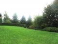 giardino36