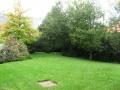 giardino43