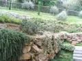 giardino49