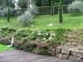 giardino52