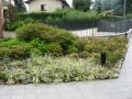giardino62