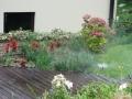 Irrigazione4